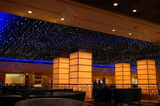 6 fiber optic ceiling lighting